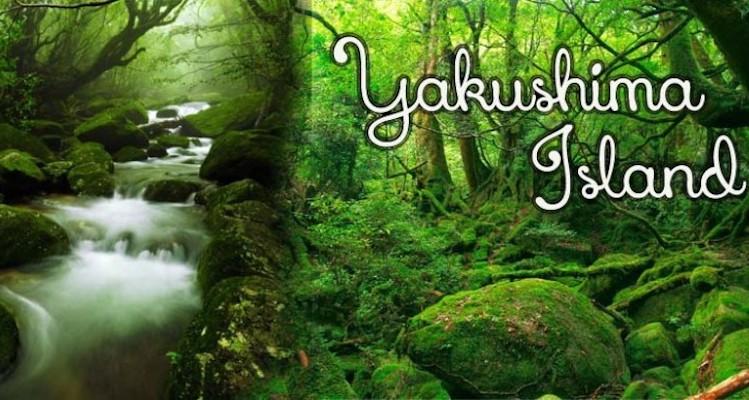 Yakushima-Island-header